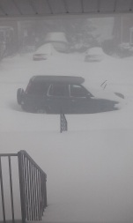 Snowzilla at 1600