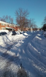 Snowzilla 2016 My street the morning after