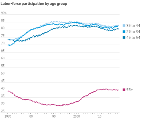 labor force participation rate by age cohort